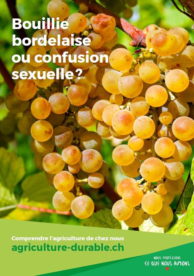 Les agriculteurs utilisent autant que possible des méthodes naturelles, comme la bouillie bordelaise ou la confusion sexuelle.