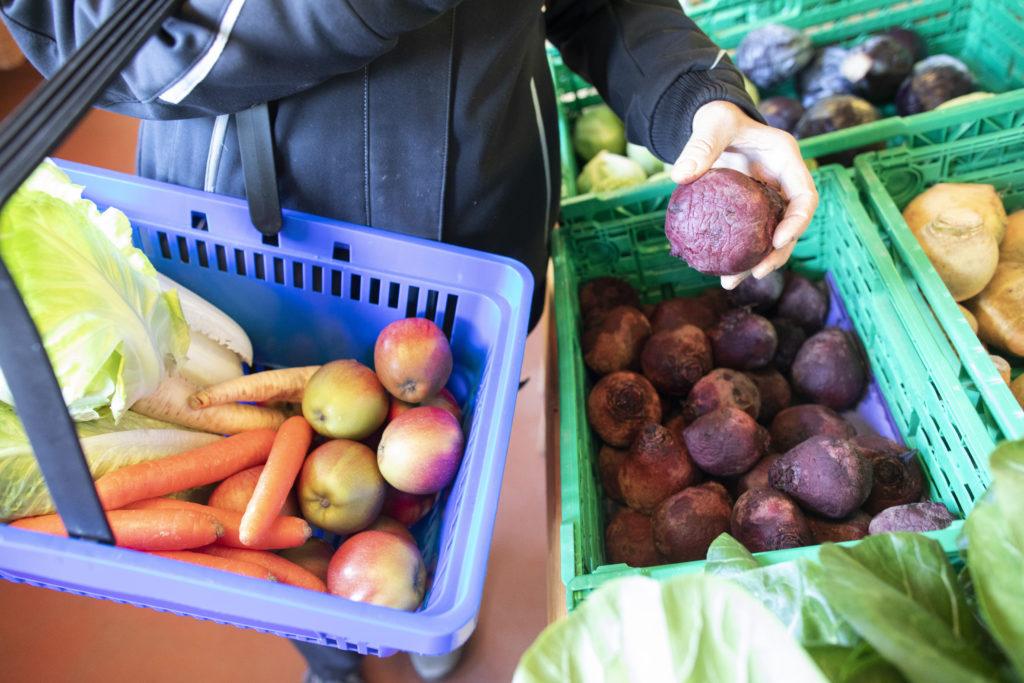 L'agriculture travaille. Commerce à la ferme, vente directe, Jardin de Closy, Laetitia Roset, légumes, approvisionnement.