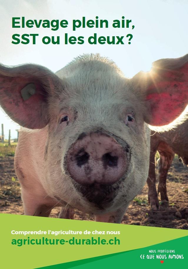Le bien-être et la santé animale sont très importants pour les éleveurs suisses de cochons.