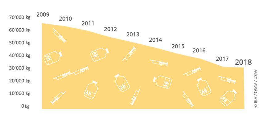 Dans la médecine vétérinaire, la consommation d'antibiotiques est en baisse constante dans les élevages suisses.