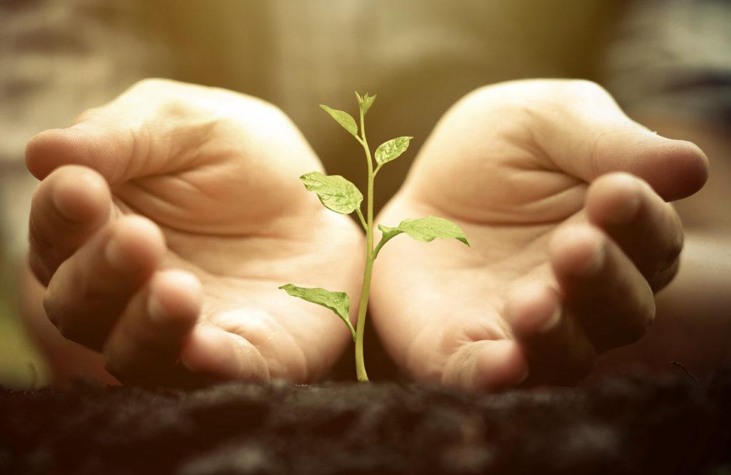 Le sol est une ressource précieuse que l'on se doit de choyer.