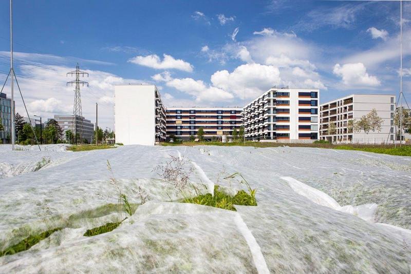 Le sol agricole disparaît à la vitesses d'un mètre carré par seconde en Suisse, sous des bâtiments industriels, des habitations ou des infrastructures.